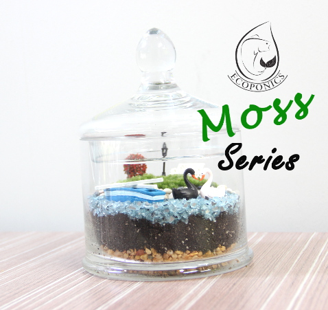 Exclusive Moss Series - EMS01