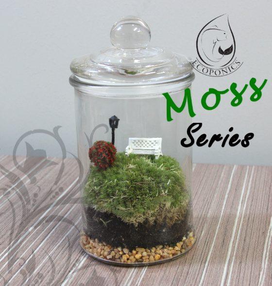 Moss Series - MS03