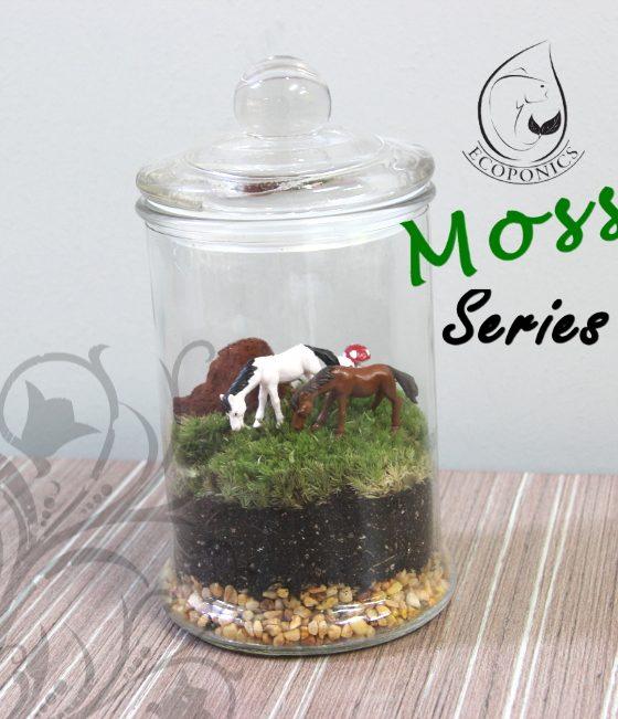 Moss Series - MS04