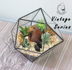 Vintage Series - VS 01