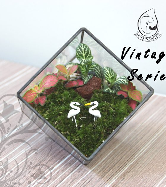 Vintage Series - VS 02