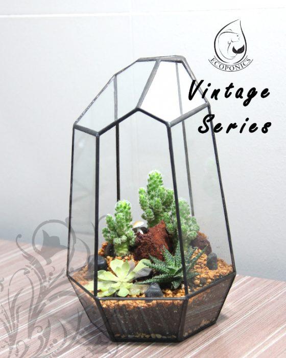 Vintage Series - VS 05