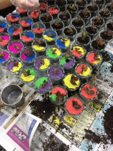 egg terrariums We Did 400 Egg Terrariums and it was EPIC. August 2021