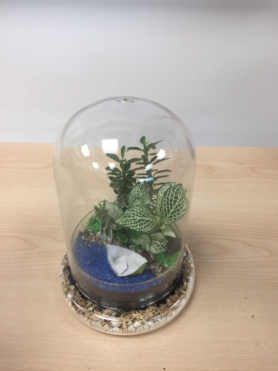 Why Terrarium Team Building
