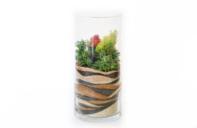 Layered Sand Terrarium