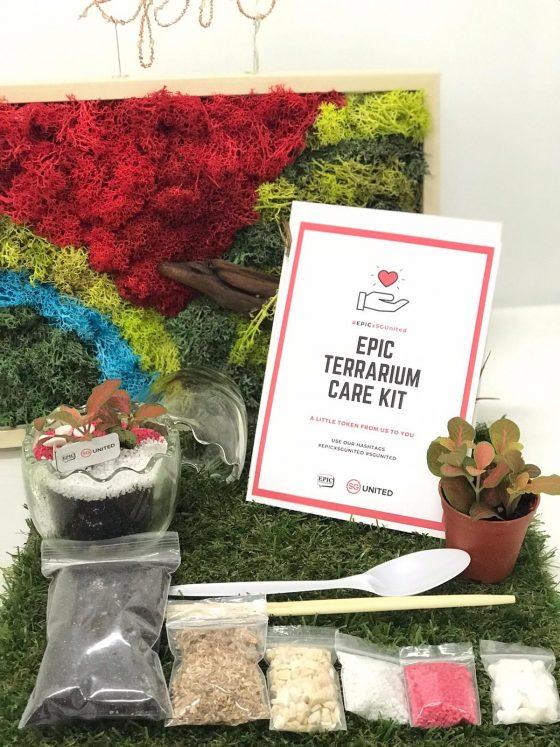 Stay Home Kits - Egg Terrarium