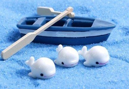 terrarium supplies singapore Blue Boat Set (Without whales) August 2021