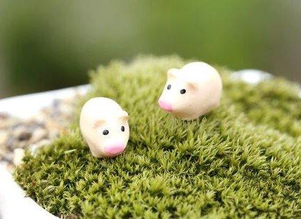 terrarium figurines Cute Piglets August 2021