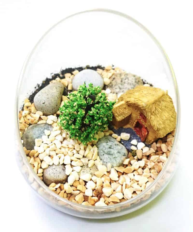 Assorted Terrarium Series Glass Bottle Terrarium Assorted Series - TAS 03 August 2021