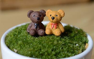 terrarium figurines singapore Teddy Bears April 2021