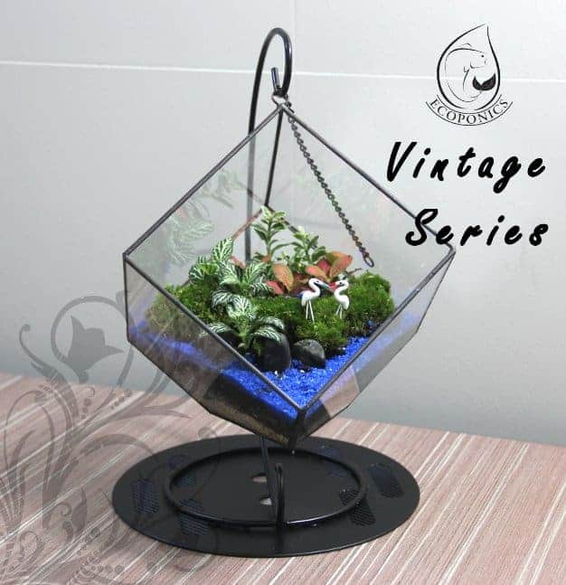 terrarium Vintage Series - VS 07 April 2021