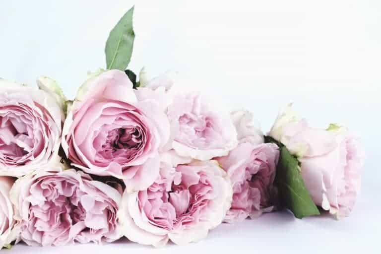Posy Bouquet Making