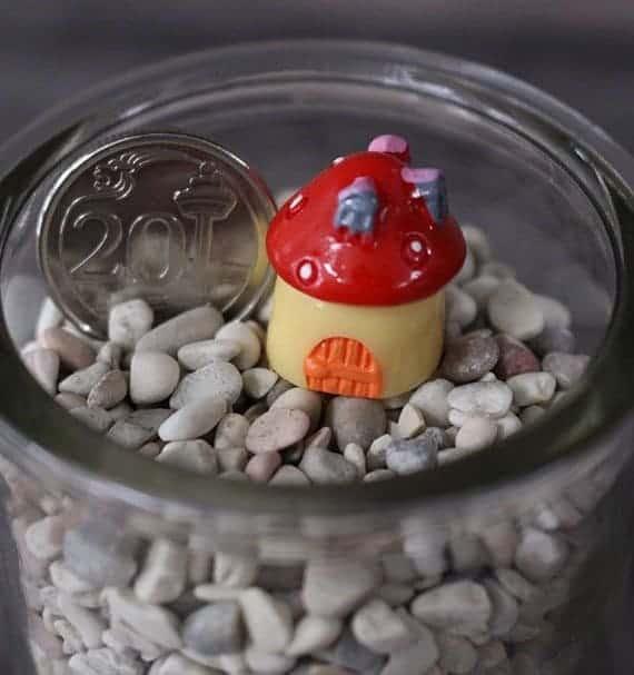 Mushroom Hut April 2021