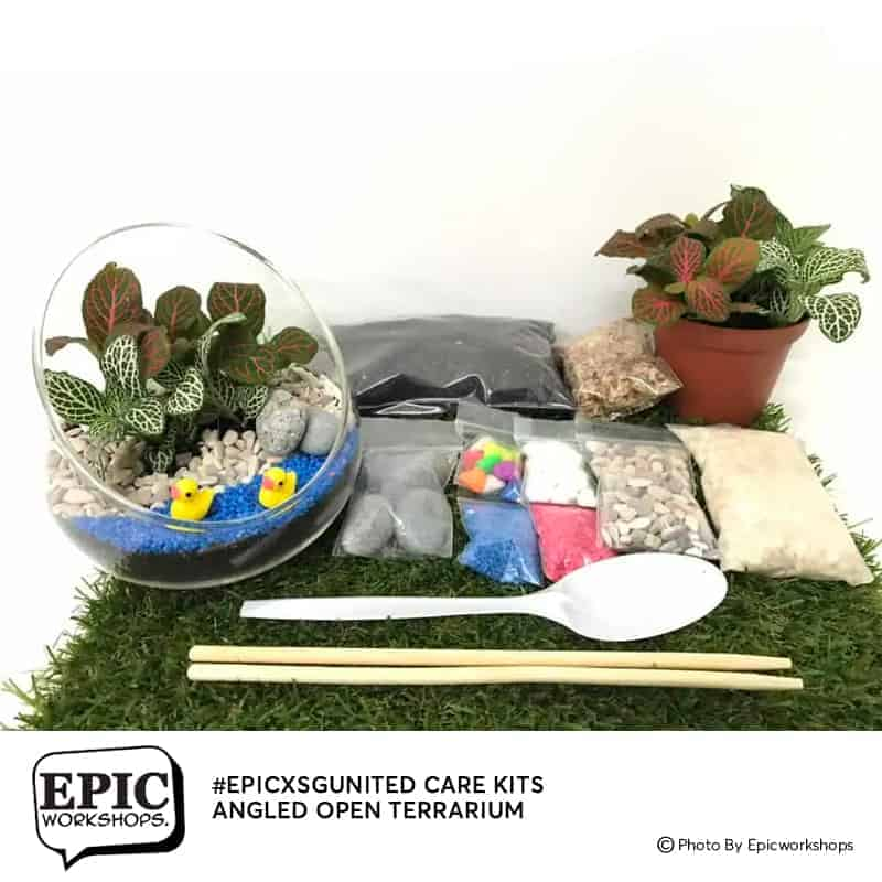 Stay Home Experience Kits - Angled Open Terrarium April 2021