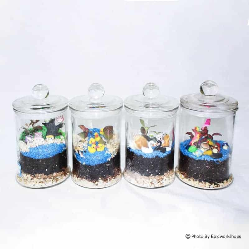Stay Home Experience Kits - Classic Closed Terrarium April 2021